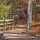 Walkway in Garden of the Gods by Sandy Keeton