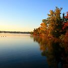 Autumn in Wisconsin by Lynne Prestebak