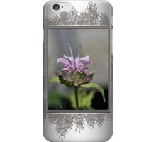 Bee Balm named Panorama Lavender iPhone Case/Skin