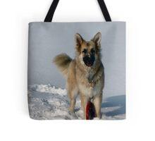 Snow Fun! Tote Bag