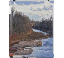 Flying Home iPad Case/Skin