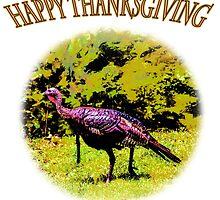 Happy Thanksgiving  by Barry  Jones