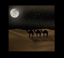 Desert Moon - Camel Crossing by Gravityx9