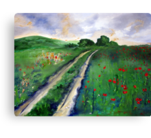 A road to somewhere Canvas Print