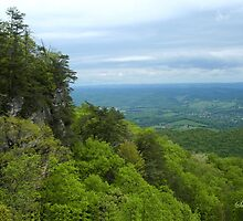 Powell Valley from Pinnacle Overlook by SummerJade