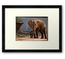 Mama Unngani and baby Framed Print