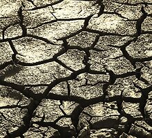 Parched Land - Clay Cracks and Nature Pattern by LivingWild