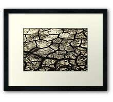 Parched Land - Clay Cracks and Nature Pattern Framed Print