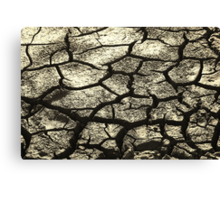 Parched Land - Clay Cracks and Nature Pattern Canvas Print
