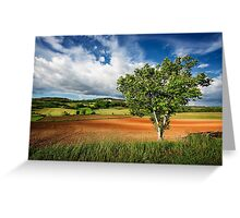 Walnut Tree Greeting Card