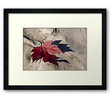 Oh Canada Maple Leaf Framed Print