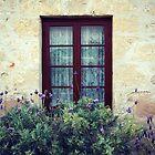 window dressing by Janine Matheson