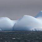Curves of an iceberg panorama by John Dalkin