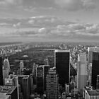 Central Park B+W by Mike Garner
