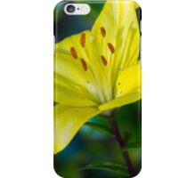 Rise and Shine iPhone Case/Skin