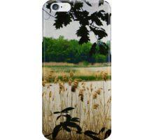 Old Woman Creek - Natural Framing iPhone Case/Skin