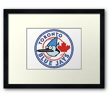 A Regular Blue Jay Framed Print