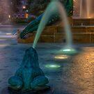 Swann Fountain by Adam Northam