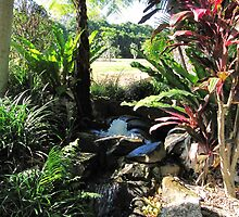 Water Feature, Thursday Plantation. Ballina. N.S.W. Nth. Coast. by Rita Blom