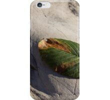 Somewhere Between Summer and Fall iPhone Case/Skin