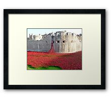 Ceramic Poppies at Tower  of London Framed Print