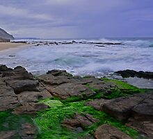 On The Rocks At Wombarra by Terry Everson