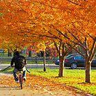 Cycling through Autumn, New York City by Alberto  DeJesus