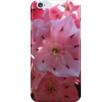Pink jingle iPhone Case/Skin