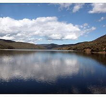 Upper Yarra Dam by WendyJC