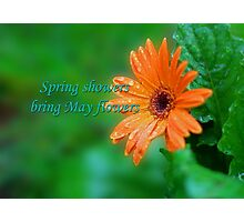 Spring showers Photographic Print