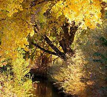 Rio Grande Gold by Denice Breaux
