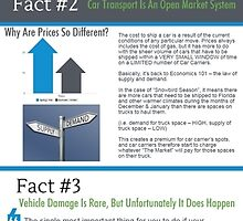 Infographic - Infographic Explains 4 Things Snowbirds Should Know About Shipping A Car by Infographics
