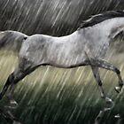 Grey In Rain by Cliff Vestergaard
