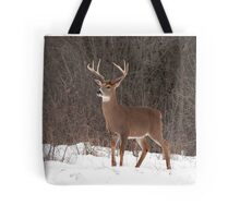 Bambi - White-tailed deer Buck Tote Bag