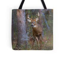 Who goes there? - White-tailed deer Buck Tote Bag