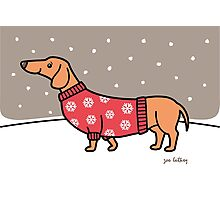 Christmas Dachshund in the Snow Photographic Print