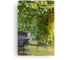 chair in the garden Canvas Print