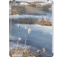 Last Days of Winter iPad Case/Skin