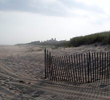 Snow Fence - East Hampton Beach by HamptonsNY
