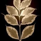 Leaves in Sepia by Christine Lake