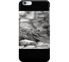 Crocodile (Alligator?) in New Mexico iPhone Case/Skin