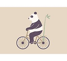 My Bamboo Bicycle Photographic Print