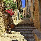 Steps In Shadow..................................Majorca by Fara
