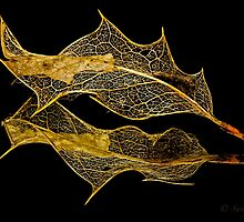 INTRICATE ( gold) by Sandy Stewart
