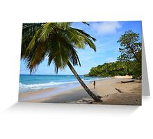 The Beach (Dominican Republic) Greeting Card