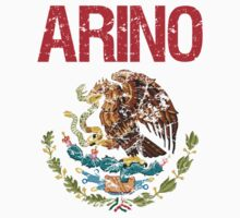 Arino Surname Mexican by surnames