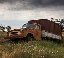 Old Truck In Paddock by Colin  Ewington