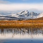 Blaven, Reeds and Snow. Isle of Skye. Scotland. by photosecosse /barbara jones
