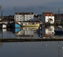 The Tide Mill, Woodbridge (Version 1) by wiggyofipswich