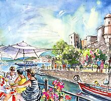 Collioure Harbour 02 by Goodaboom